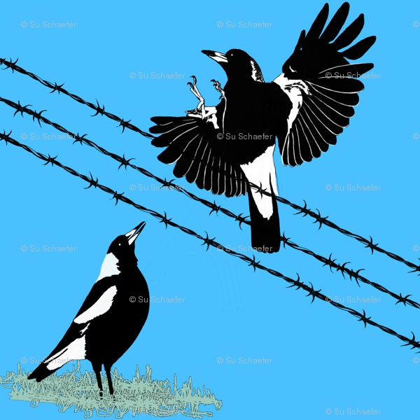 Baby Magpies Learn to Fly - YouTube