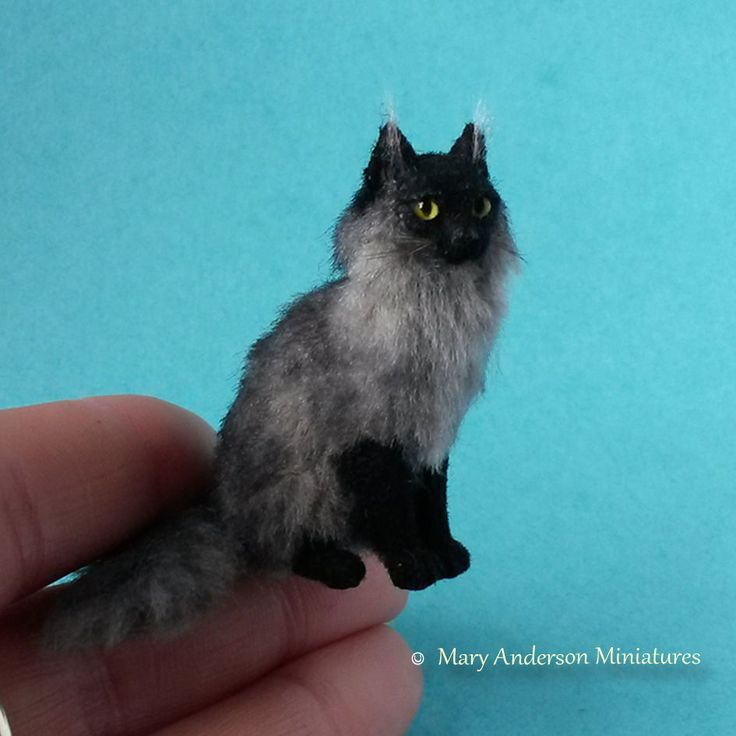112 OOAK realistic DOLLHOUSE MAINE COON CAT