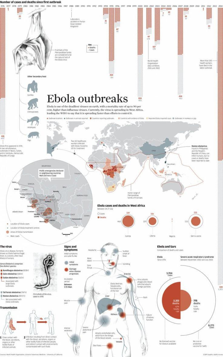 Ebola outbreaks explained. Y ahora a pasar a vídeo esta infografía.