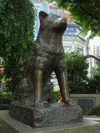 Hachikō greeted his owner at the end of each day at the nearby Shibuya Station. One day his owner died and did not return.For the next nine years the dog waited at the station at precisely the time the train would arrive. This monument of Hachiko remains in Shibuya Station today & continues as a meaningful, agreed upon place for people to wait for one another. Every year April 8th is Hachiko Day, a day of celebration for all of Japan.
