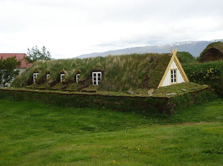 sod house, was a corollary to the log cabin during frontier settlement of Canada and the United States. The prairie lacked standard building materials such as wood or stone; however, sod from thickly-rooted prairie grass was abundant.[1] Prairie grass had a much thicker, tougher root structure than modern landscaping grass.