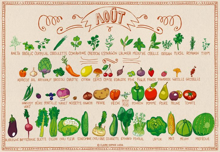 Calendrier des fruits et légumes de saison | AnnSo Cuisine