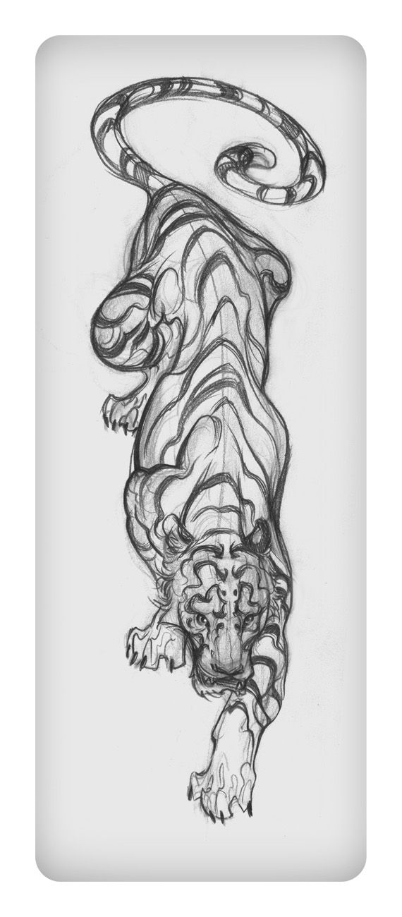 "Tattoo #4: Tiger Sketch with Splashes of Color. Placement: middle back, left side of spine. Meaning: Power, Ferocity, Might, Invincibility, and Beauty. ""The Fighter Still Remains."""