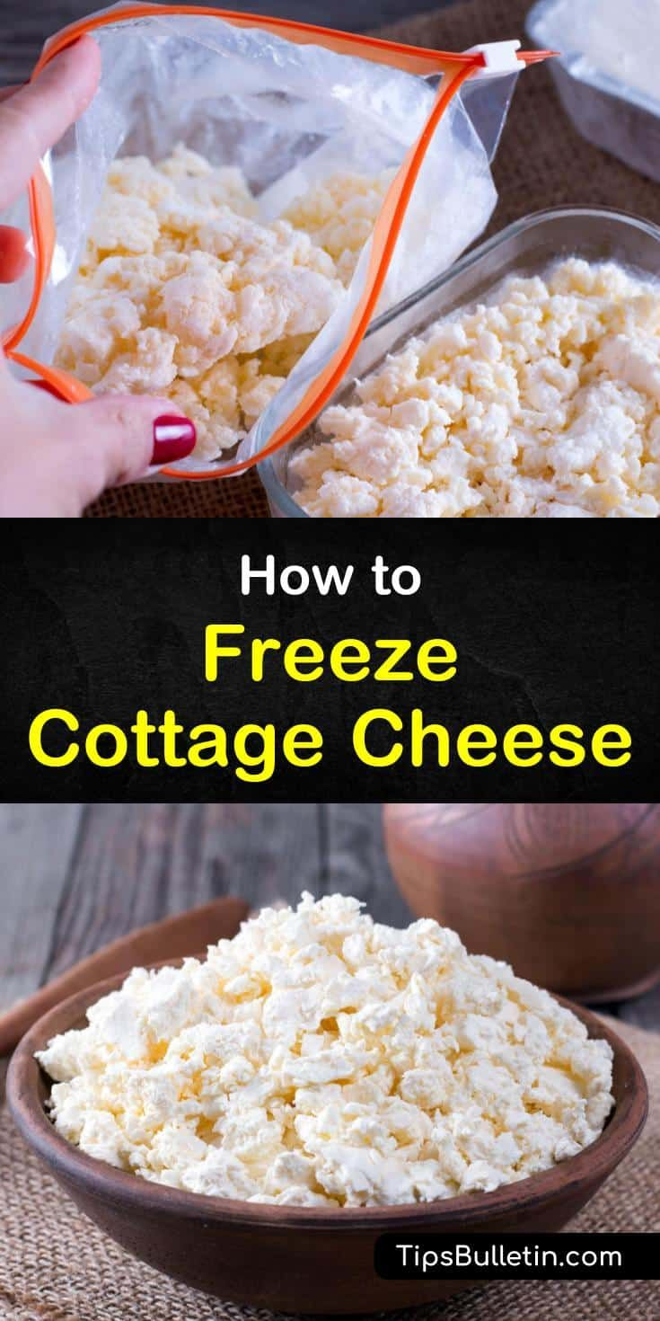 Cottage Cheese Recipe Recipe Cottage Cheese Recipes Homemade Cottage Cheese Cheese Recipes