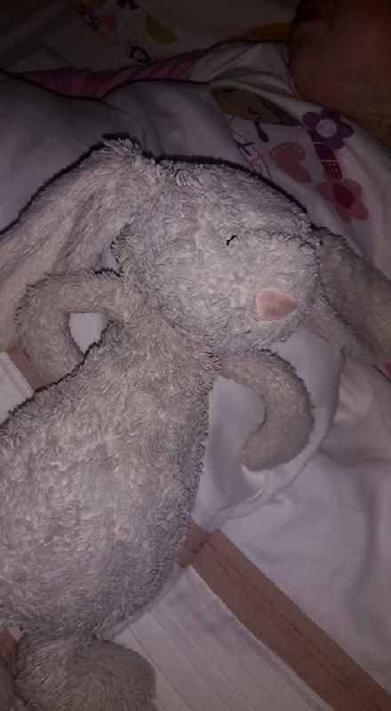 Lost on 05 Jun. 2016 @ hull. My daughter left her very well loved Jelly Cat Rabbit on the 17.43 London Kings cross to Beverley train yesterday. It was left in Coach A seat 40 as she got off at Selby station, it is an off white... Visit: https://whiteboomerang.com/lostteddy/msg/w557ar (Posted by Damian Taylor on 06 Jun. 2016)