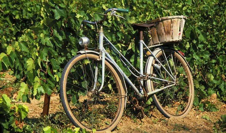 5 wine tours στη Μεσόγειο