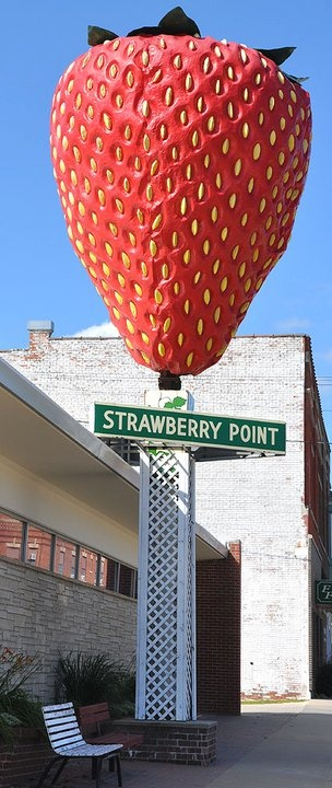 Giant Strawberry - Strawberry Point, Iowa. This 15' tall strawberry is installed on a pole in front of City Hall. It is made of fiberglass and was created in 1967.