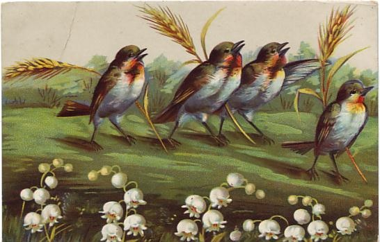 Giesen Bros Enamelette Postcard - Birds and Buds  c1908