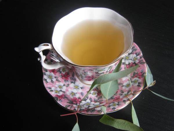 Eucalyptus Tea: Your Arsenal Against Cold and Flu