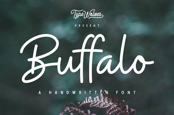 Buffalo Font - 25% OFF by Typewolves on @creativemarket