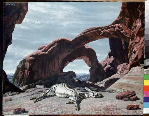 """Slapende zebra (Sleeping Zebra)"", 1959 / Carel Willink (1900-1983) / Collection G.B. Huisman, Monaco"