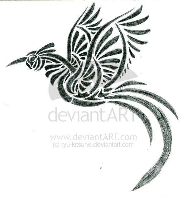 Haida Tribal Bird Tattoo Designs Pictures
