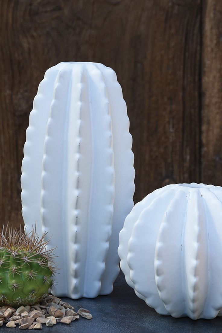 Barrel Cactus Ceramic Vase By Homart On Hautelook For The Home Pinterest Barrel Cactus