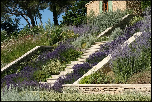 Terraced Garden in Provence | Flickr - Photo Sharing!
