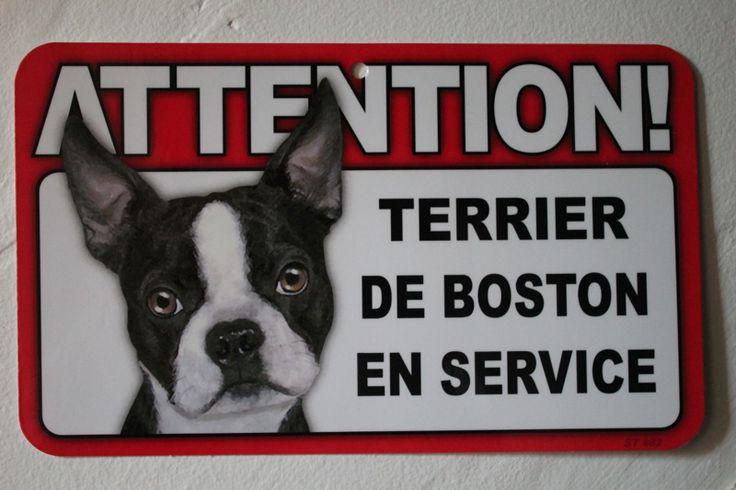 Attention! Terrier de Boston en Service - http://www.bterrier.com/attention-terrier-de-boston-en-service/