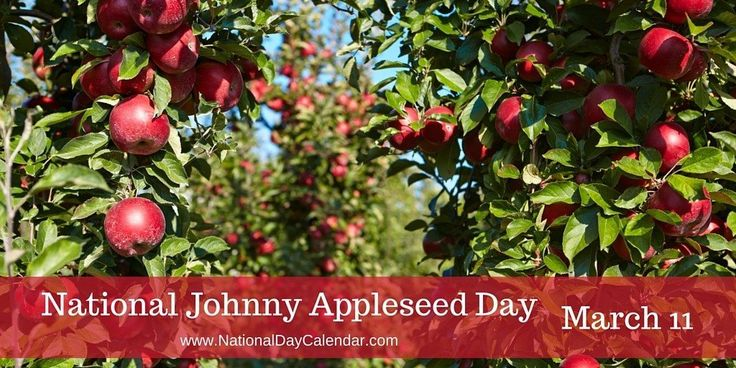 The story of Johnny Appleseed is quite interesting... #JohnnyAppleseedDay check  out his story today!