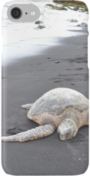 Black Sand Turtle - Punalu'u Beach Hawaii #beachgifts #beach #gifts #gift Ideas