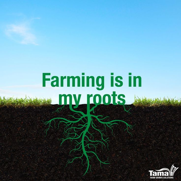 Farming Quotes: 105 Best Farming Quotes & Posters Images On Pinterest
