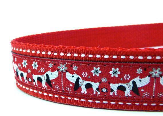 Daisy Dog in red dog collar/ Adjustable dog collar/ Martingale Collar