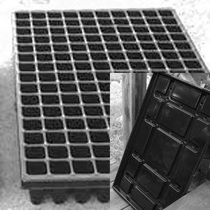 Till lök - Paketerbjudande: Pluggbrätte 150 celler med underbevattningsbricka.