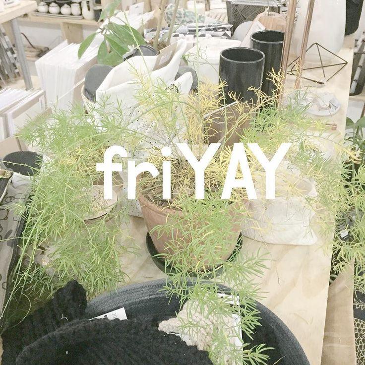 YAYS all round for Friday! #friYAY