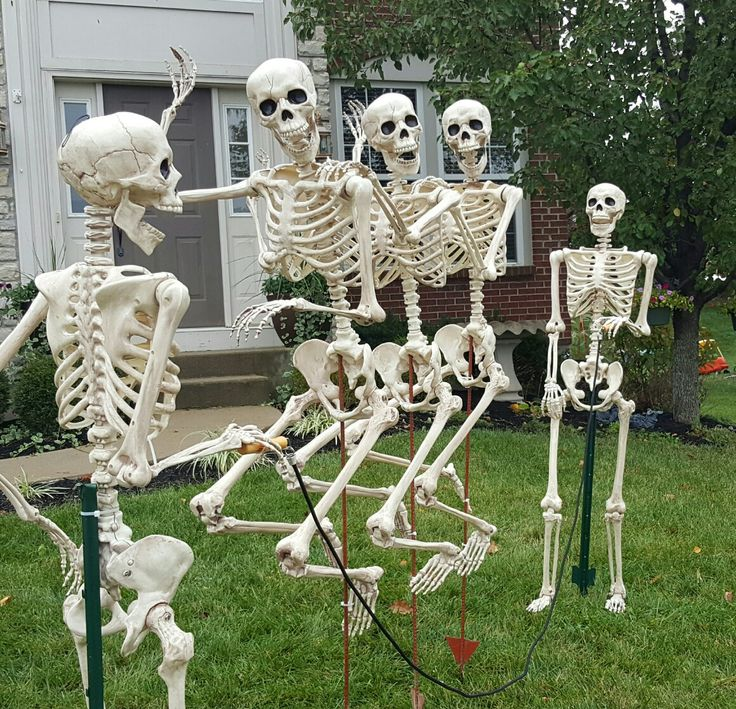 gonna need to creep the thrift stores for more skeletons