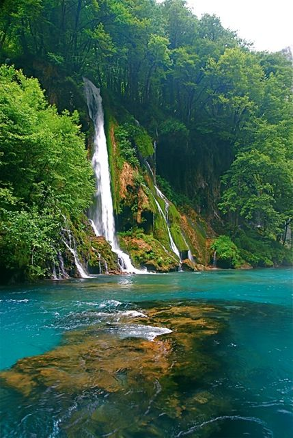 Tara River canyon (the deepest canyon in Europe), Montenegro