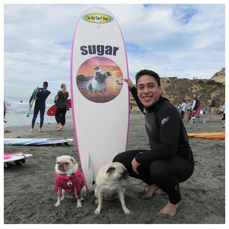 NatGeo, SOCAL Surf Dogs, Brusurf & Andre Millan
