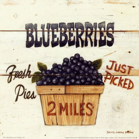 Blueberries Just Picked, PIE, PIE,My stomach is crying and I,m almost dying for a piece of juicy blueberry pie!