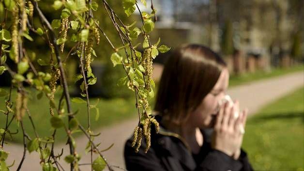 Joka toinen suomalainen kärsii jossain vaiheessa elämäänsä jostain allergiasta.