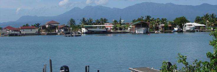 Guadeloupe insolite et authentique : surprise autour de Pointe-à-Pitre