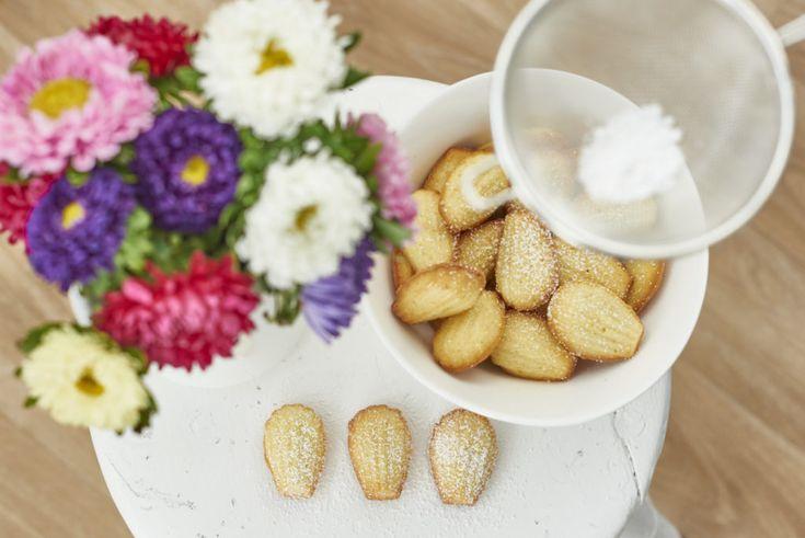 Madeleines - les petits biscuits français | HOLZ & HEFE