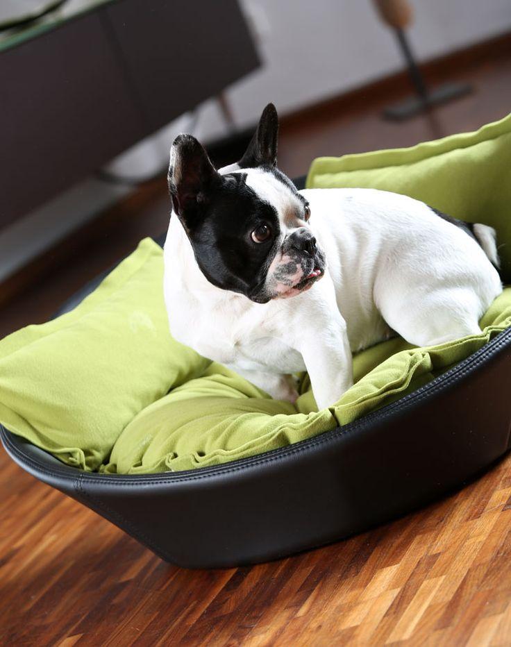 MILA ecopelle cuccia per cani, cuccia per cane, letto per cane