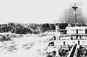 Rogue waves (also known as freak waves, monster waves, killer waves, extreme waves, and abnormal waves) are relatively large and spontaneous...