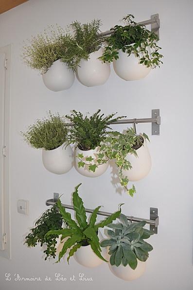 Des pots à ustensiles et des crédences de #cuisine pour faire un mur végétal, astucieux#