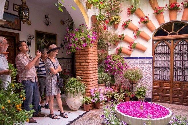 Image result for concurso de patios en cordoba 2017