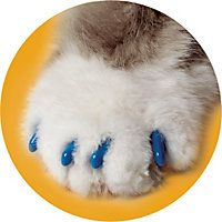 Soft Claws Blue Cat Nail Caps. cat foster told us about this and changes once a month. safe