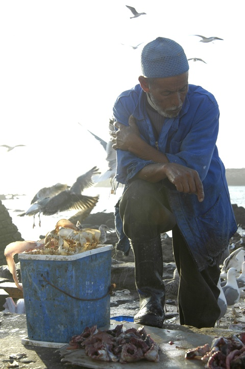 Essaouira, Marocco, fisherman
