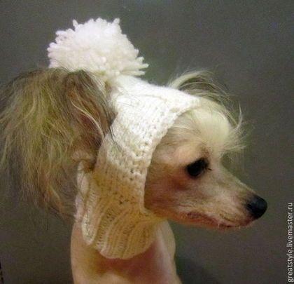 Одежда для собак, ручной работы. Ярмарка Мастеров - ручная работа. Купить Шапка-капор для собаки. Handmade. Белый, капор, акрил