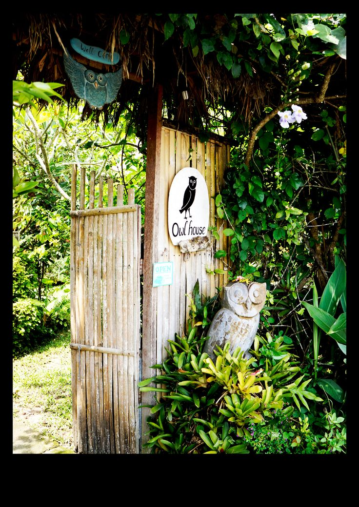 Owl house,Ubud