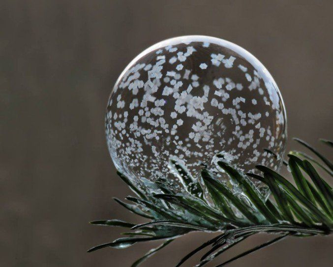 Amazing Photos Of Bubbles Frozen In Frigid Temperatures --artist and photographer Cheryl Johnson
