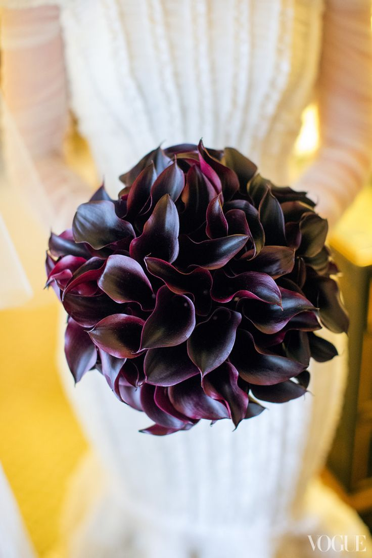 Calla lilies by Marc Eliot of Floralia.