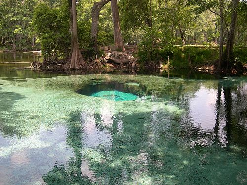 Best place I EVER went camping. Ginnie springs in Florida. Coolest water, and they have caves you can dive in.