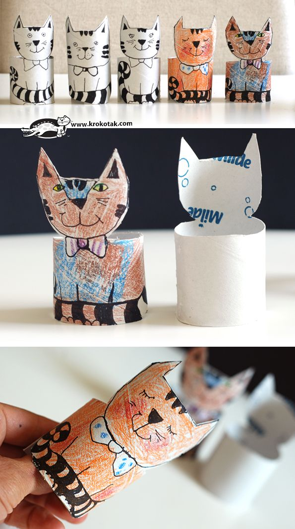 An Empty Paper Roll Coloring Cat
