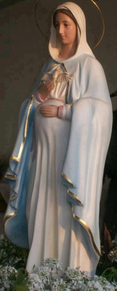 Virgen de la dulce espera                                                       …