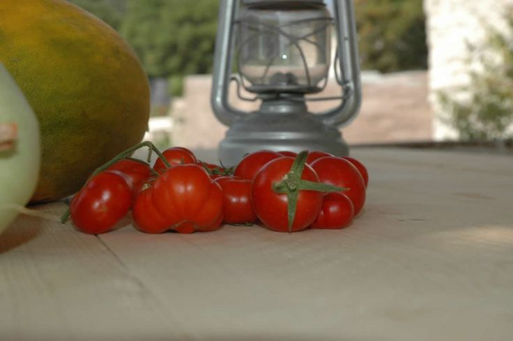 From the rainfed vegetable garden.