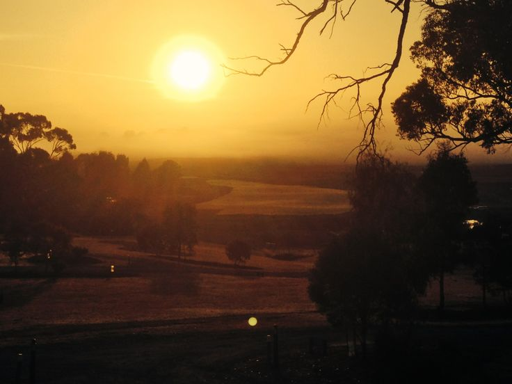 Stunning sunset overlooking our new 16th fairway in Yering. #easterngc #yeringcottages #yarravalley #landscape