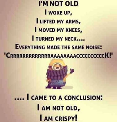 33 So Funny Minion Quotes and Pictures Hey, you got to sleep though. No one invited you! Everything ...
