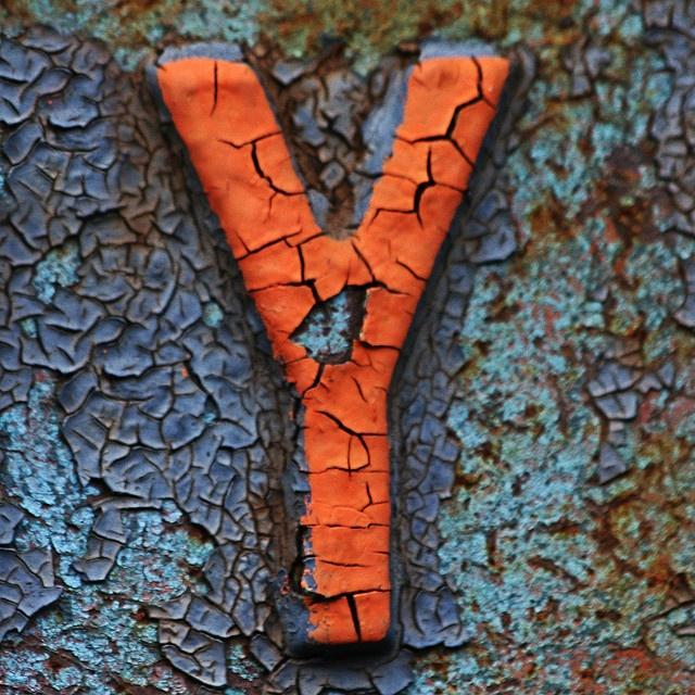 letter Y by Leo Reynolds, via Flickr