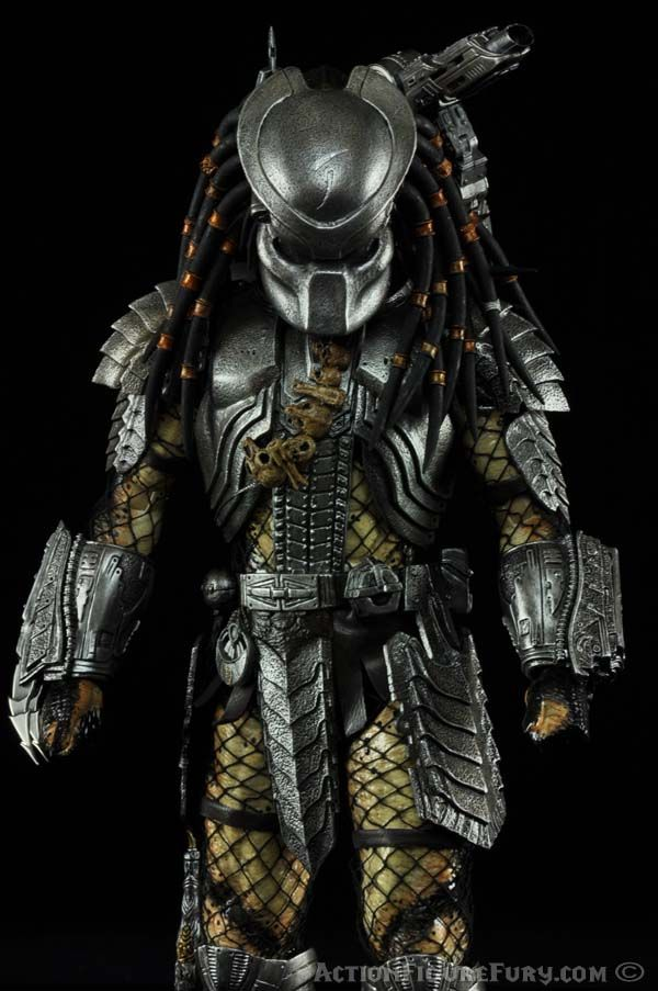 Pin By Jason Palombo On Predator The Ultimate Hunter In 2018